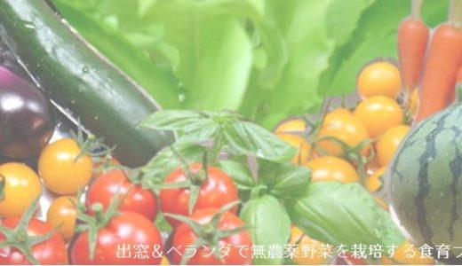 2014年 夏野菜の育苗